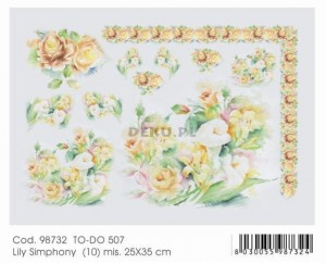 Papier do decoupage 250x350mm -TO-DO 507 1163