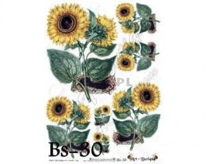 Papier do decoupage 210X305 - Art-Butique Bs-30 1757